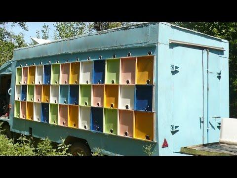 Павильонное пчеловодство