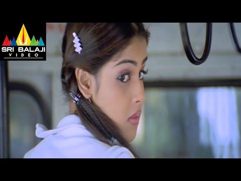 Xxx Mp4 Sye Movie Nithin And Batch Teasing Genelia Nithin Genelia Sri Balaji Video 3gp Sex