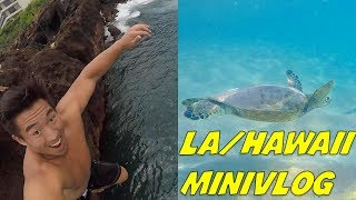 I'M BACK! YOU GUYS HAVE CHANGED MY LIFE! HAWAII & LOS ANGELES MINIVLOG!