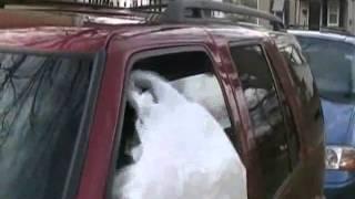 how we bang in da hood 480p)