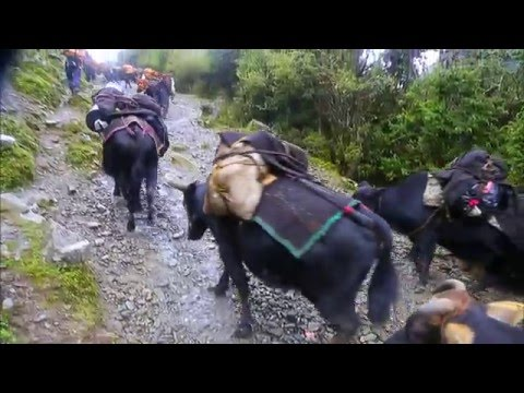Bhutan In Search of a Celestial Kingdom Part 1.Road to Merak an Unchartered Land