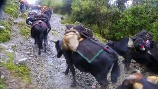 Bhutan, In Search of a Celestial Kingdom Part 1.Road to Merak, an Unchartered Land