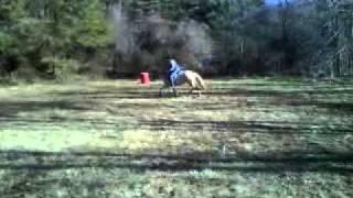 tinkerbell jumping.3GP