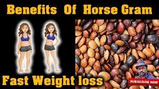 கொள்ளு பயன்கள் | Benefits Of Horse Gram | Esh Vlogs