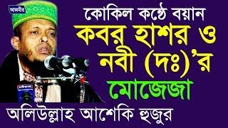 কবর হাশর ও নবী (দঃ) এর মোজেজা | Hafez Waliullah Asheqi । Bangla Waz । Azmir Recording | 2017