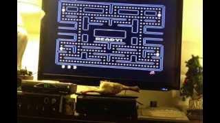 Ep. 55 - GMBIT  Atari XEGS ( 1987 )