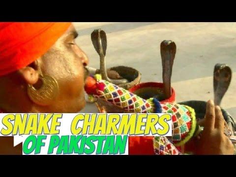 Jogi Snake Charmers of Sindh , Pakistan