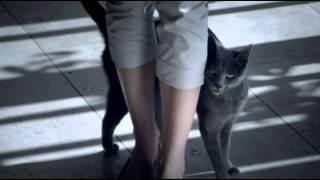 Sheba desire Patricia Murphy Films 2010.mp4