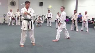 KUMITE DRILLS:  Footwork and Fitness