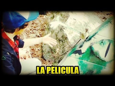 Xxx Mp4 ¿Hay Un TRAILER De La PELICULA LIVE ACTION De GRAVITY FALLS ¿VERDAD O FALSO 3gp Sex