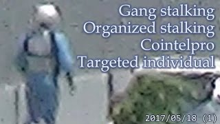 集団ストーキング被害者の記録 2017.5.18 (1) Gang-stalking Organized-stalking Cointelpro Targeted Individuals
