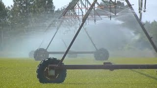 Modern, Efficient Irrigation Systems Save Money For Farmers