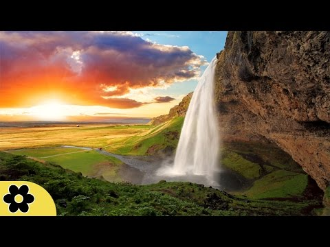 8 Hours Music for Sleeping, Soothing Music, Stress Relief, Go to Sleep, Background Music, ✿3094C
