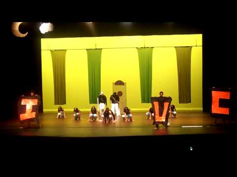UIUC Fizaa at Nachle Express 2010 1st Place Show