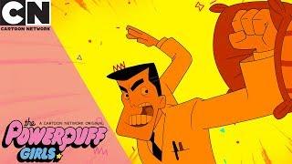 The Powerpuff Girls | Professor Pillow Fighter | Cartoon Network
