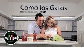 Dora Libia - Como los gatos ft. La Trakalosa de Monterrey (Video Oficial)