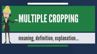 What is MULTIPLE CROPPING? What does MULTIPLE CROPPING mean? MULTIPLE CROPPING meaning & explanation