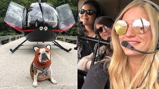 Flying with the AMAZING Helicopter Dog Bentley!