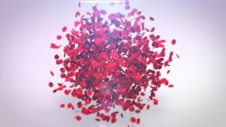 Playing Petals Logo Reveal ( After Effects Project Files ) ★ AE Templates