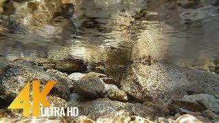 Underwater Scene in 4K (Ultra HD) with Relaxing Underwater Sounds - 2 Hour. Part 2
