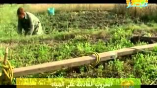 الحروب القادمة على المياه وليس على النفط دلتا مصر