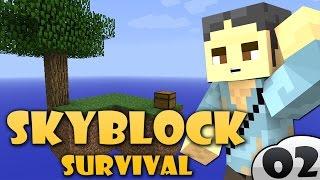 MINECRAFT: SKYBLOCK SURVIVAL - CONQUISTIAMO L'ISOLA!! #2