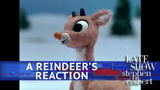 Rudolph And Friends Respond To Donald Trump Jr.