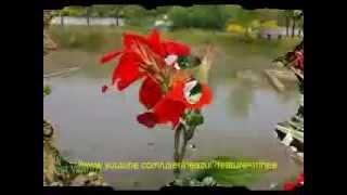 Koto je bhalobasi tomake-Probal Chaudhury & Uma Khan