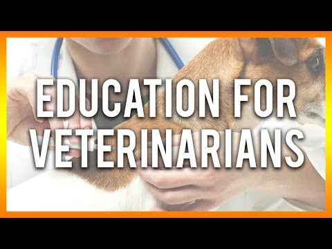Xxx Mp4 Education For Veterinarians Free Veterinary CE Below 3gp Sex