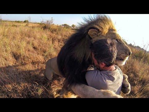 7 Relaciones Con Animales Que No Creeras Que Existen