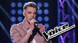 Knut Kippersund Nesdal - Million Reasons | The Voice Norge 2017 | Knockout