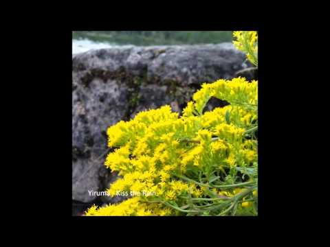 1 Hour Yiruma -  Kiss the Rain