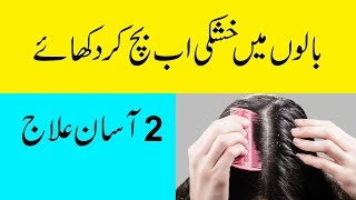 Dandruff Remedies At Home Naturally In Urdu   How To Remove Dandruff From Hair In Hindi