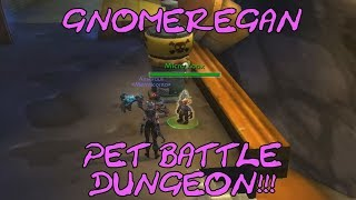 WoW Gnomeregan Pet Battle Dungeon Normal Mode Playthrough with funny mega fails