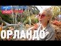 Download Video Download Орландо. Орёл и Решка. Перезагрузка. АМЕРИКА 3GP MP4 FLV