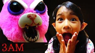 【深夜にぬいぐるみで遊んじゃダメ!】DO NOT PLAY STUFFED ANIMAL AT 3AM himawari-CH