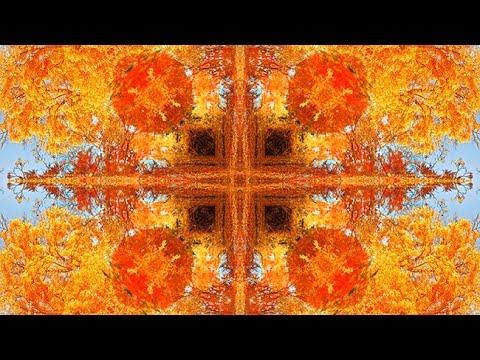 Xxx Mp4 Membuat Efek Mirror Pola Simetri Abstrak Photoshop 3gp Sex