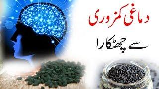 How To Increase Brain Power - Boost Brain Memory Naturally