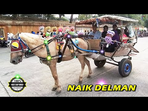 NAIK DELMAN ISTIMEWA ~ Lagu Anak Indonesia Terpopuler Sepanjang Masa👍