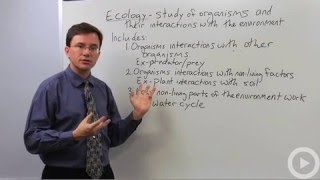 Ecology Overview