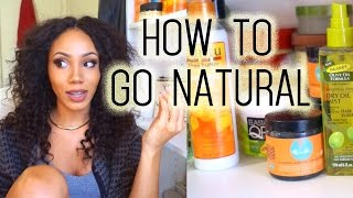 How to Go Natural | Beginners
