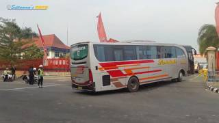 MANUVER Belok Tujuh Unit Bus EKA Pariwisata Masuk ke Parkiran Gudang garam Kediri