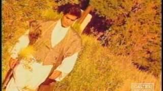 Omid - Ghalandar | امید - قلندر