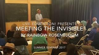 SUMMER SEMINAR 2017 | WALDORF HOMESCHOOL CONFERENCE | RAINBOW ROSENBLOOM