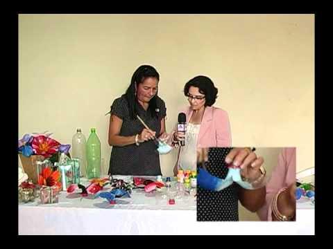 Programa Artes e Ofícios Aprenda a fazer borboletas de garrafa pet