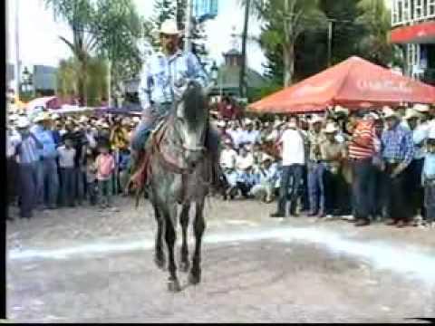 BAILE DE CABALLOS EN CUAUTLA No 5