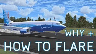 FSX How to Flare + What is Flaring | Tutorials
