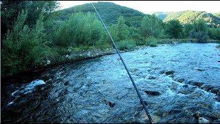 Pesca Mixta ( Cucharilla , y a pluma ) Trágico final :(