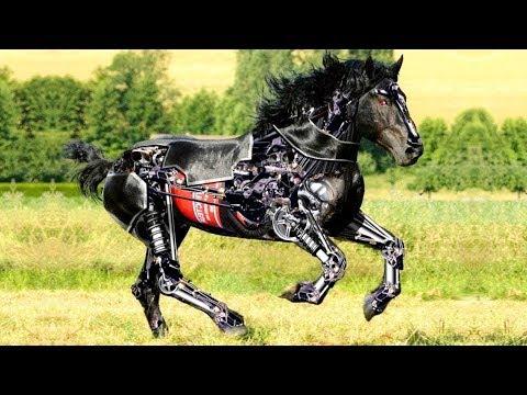 Xxx Mp4 जानवरों के 9 सबसे अजीबोगरीब रोबोट 9 Advanced Futuristic Animal Robots That Exist In Real World 3gp Sex
