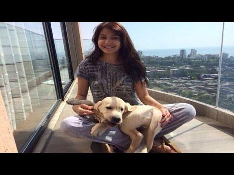 Xxx Mp4 Anushka Sharma Spends Valentines' Day With Dude 3gp Sex